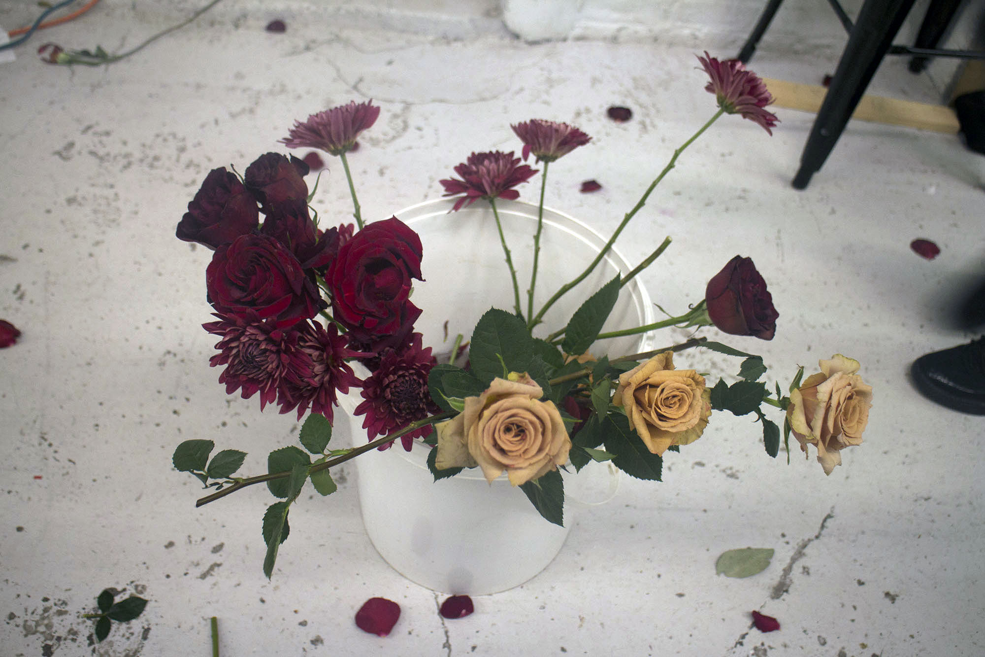 FlowersIndia_141.jpg