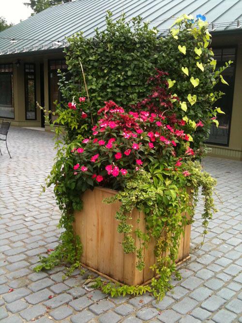 garden-planter4.jpg