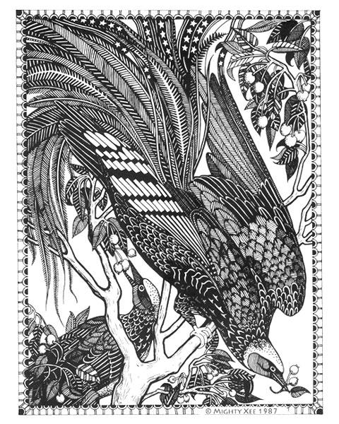 kalahari-cards-mx-bird-of-paradise.jpg