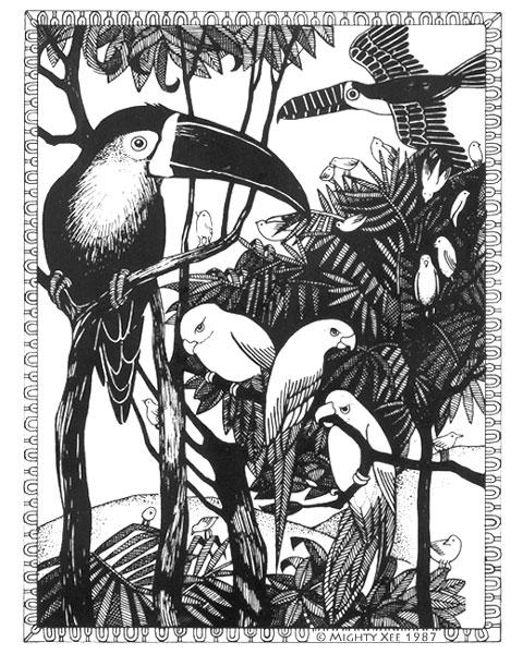 kalahari-cards-mx-jungle-birds.jpg