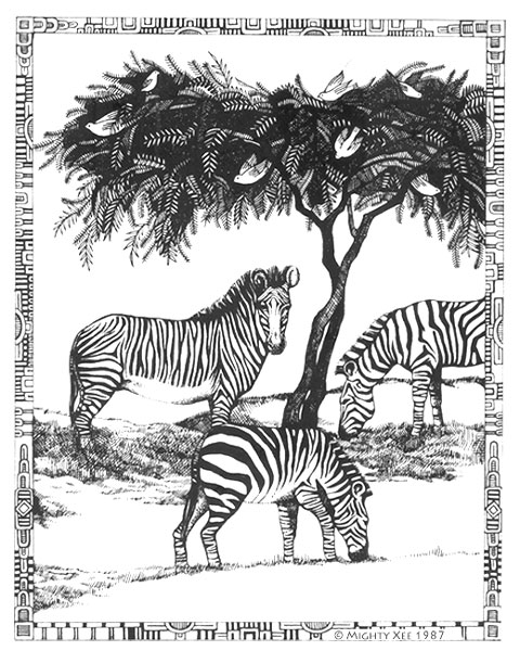 kalahari-cards-mx-zebra.jpg