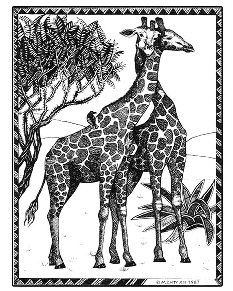 kalahari-cards-mx-giraffe.jpg
