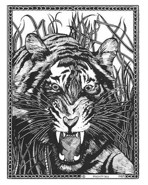 kalahari-cards-mx-tiger.jpg
