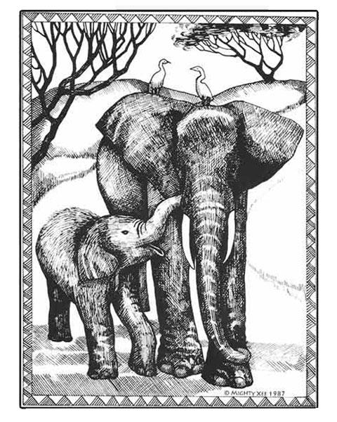 kalahari-cards-mx-elephants.jpg