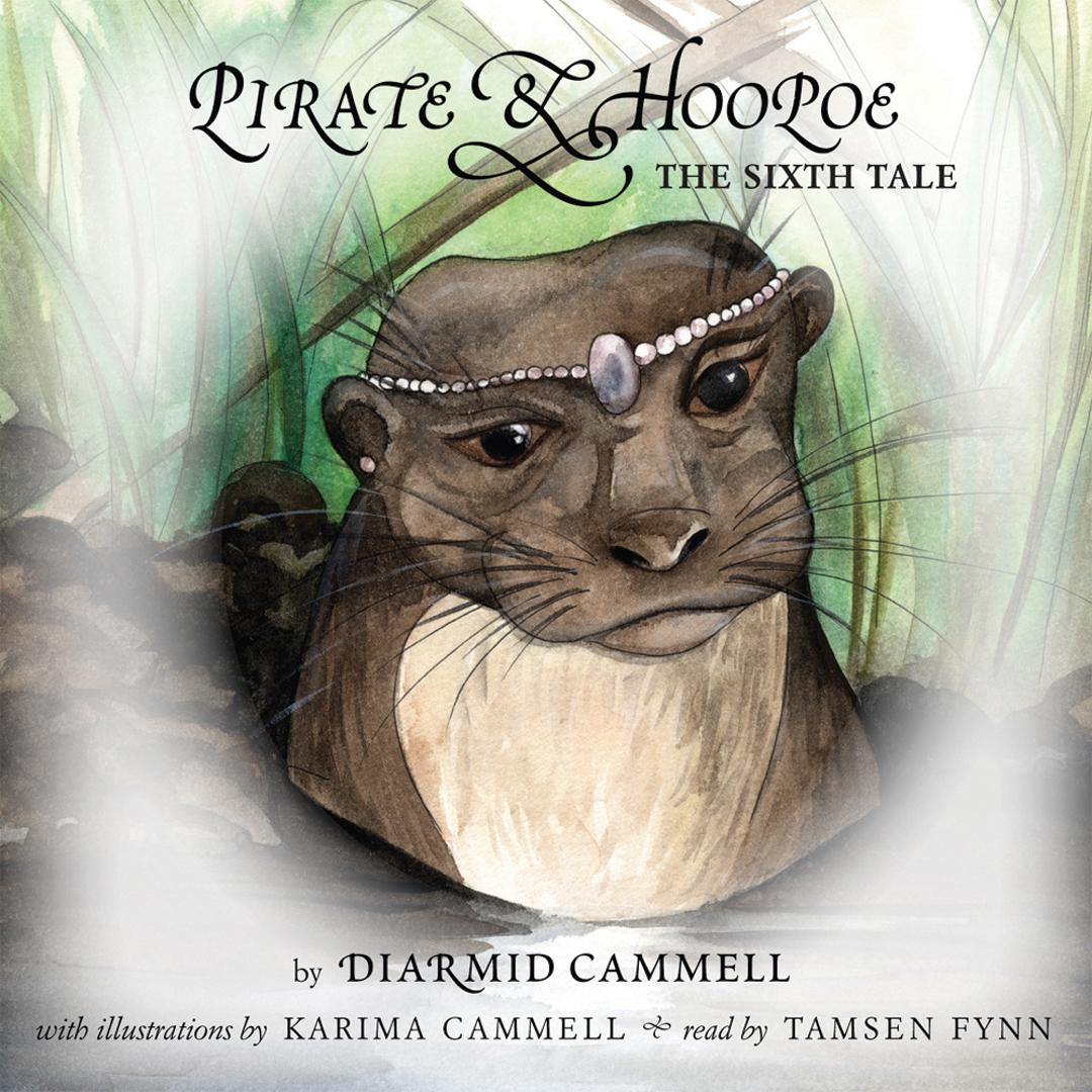 3 Pirate and Hoopoe Sixth Tale.jpg
