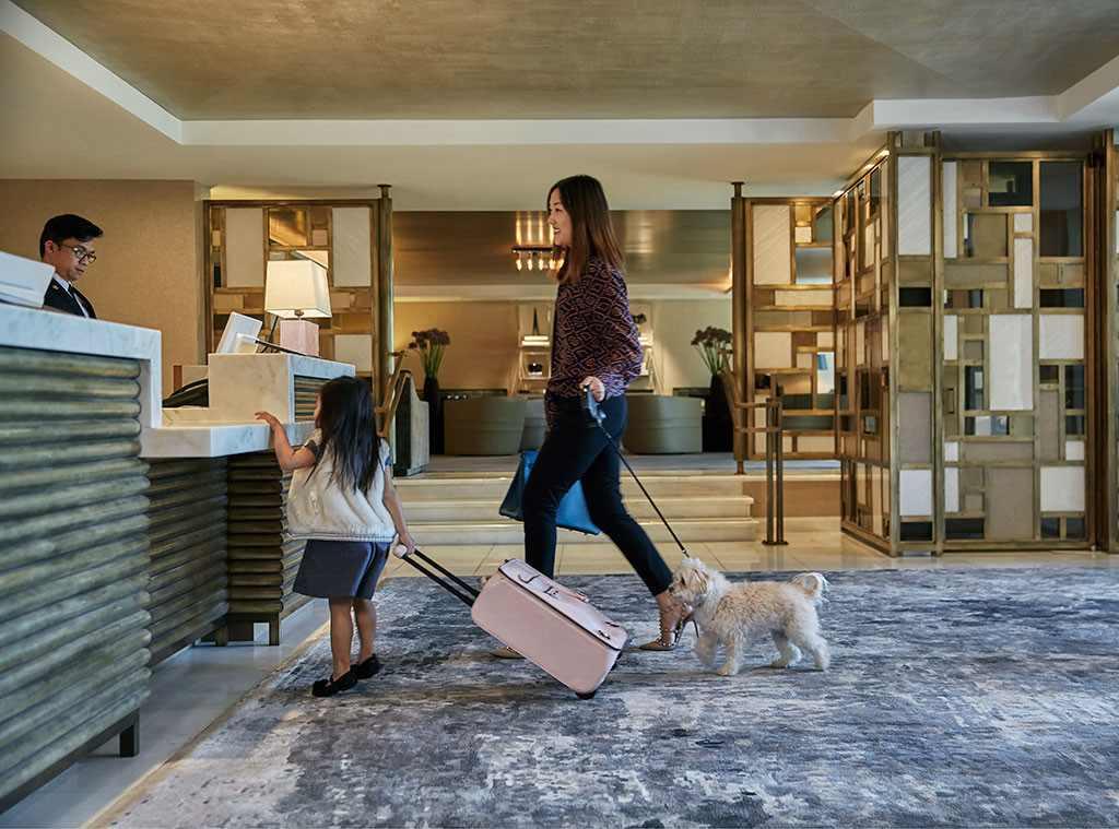 rs_1024x759-161021122208-1024.LErmitage-Beverly-Hills-Pet-Week-Lobby.kg.102116.jpg