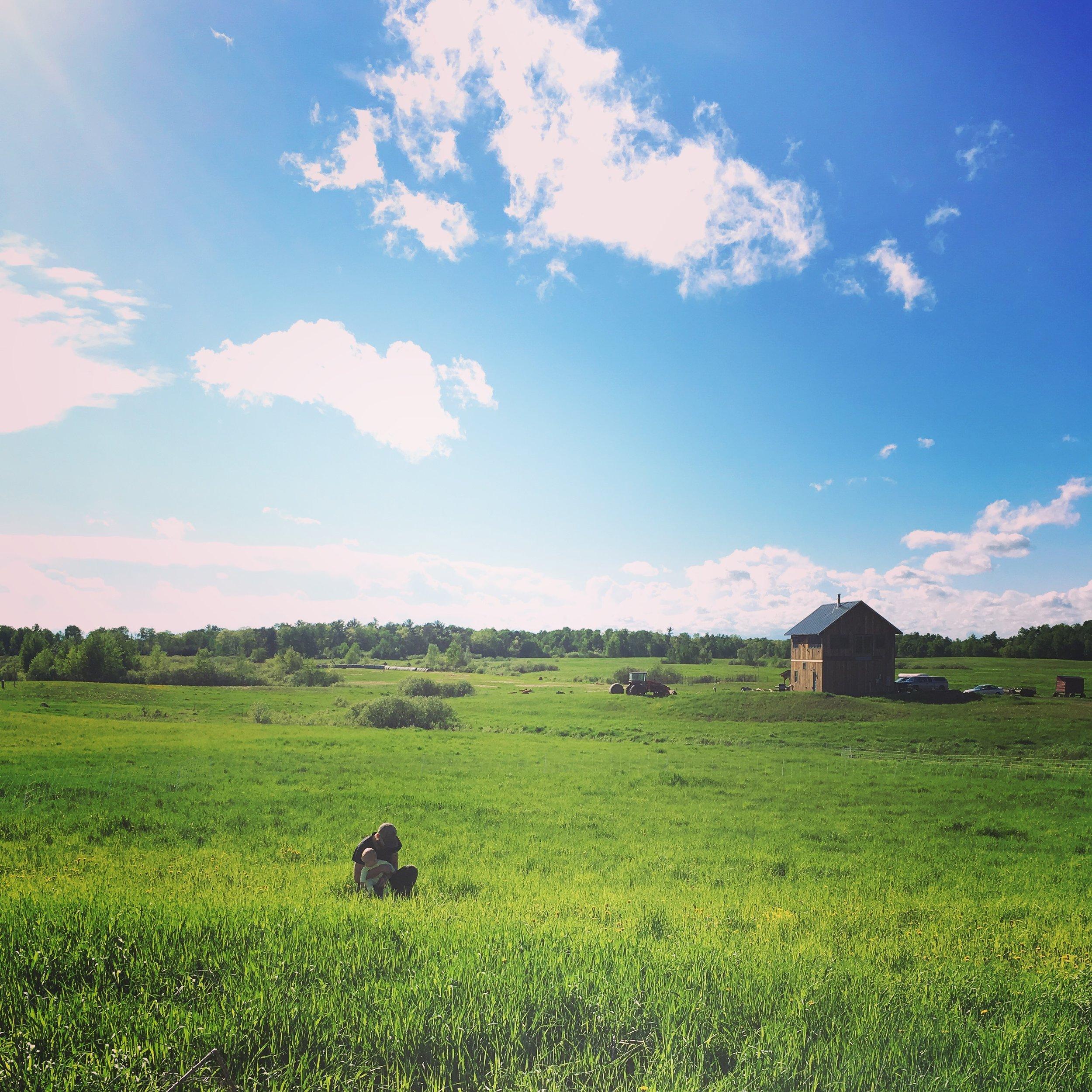 pasture - house.JPG