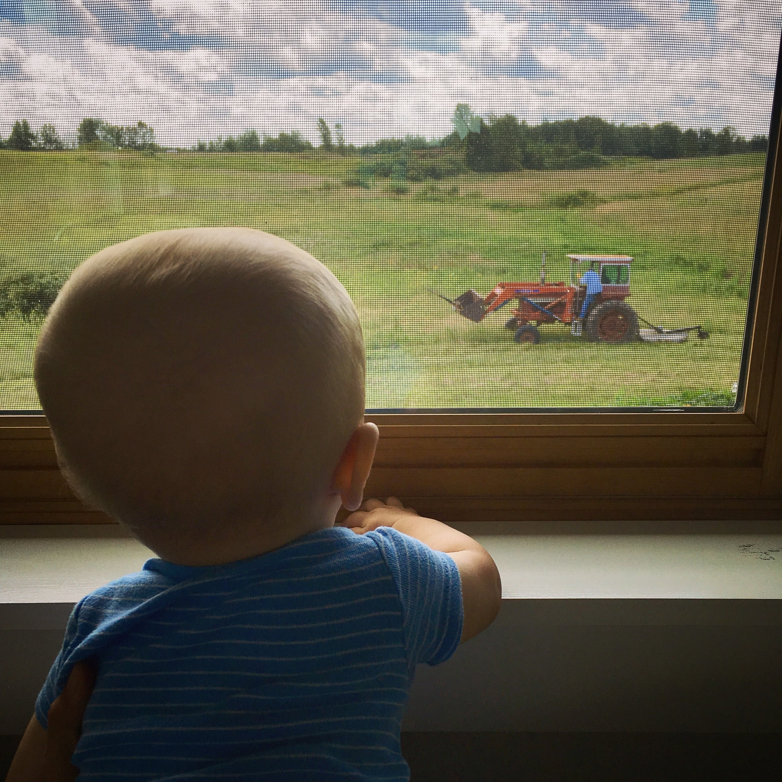 watching papa and grandpa drive the tractor