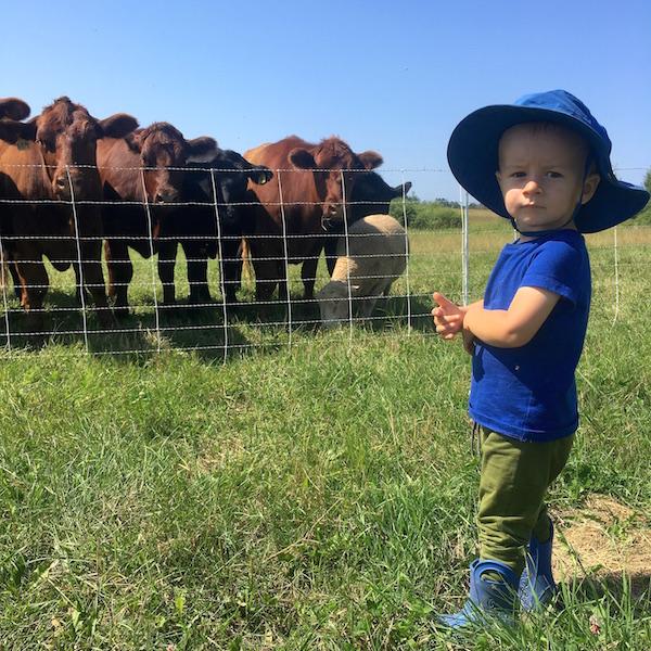 Harvey - cattleman.JPG