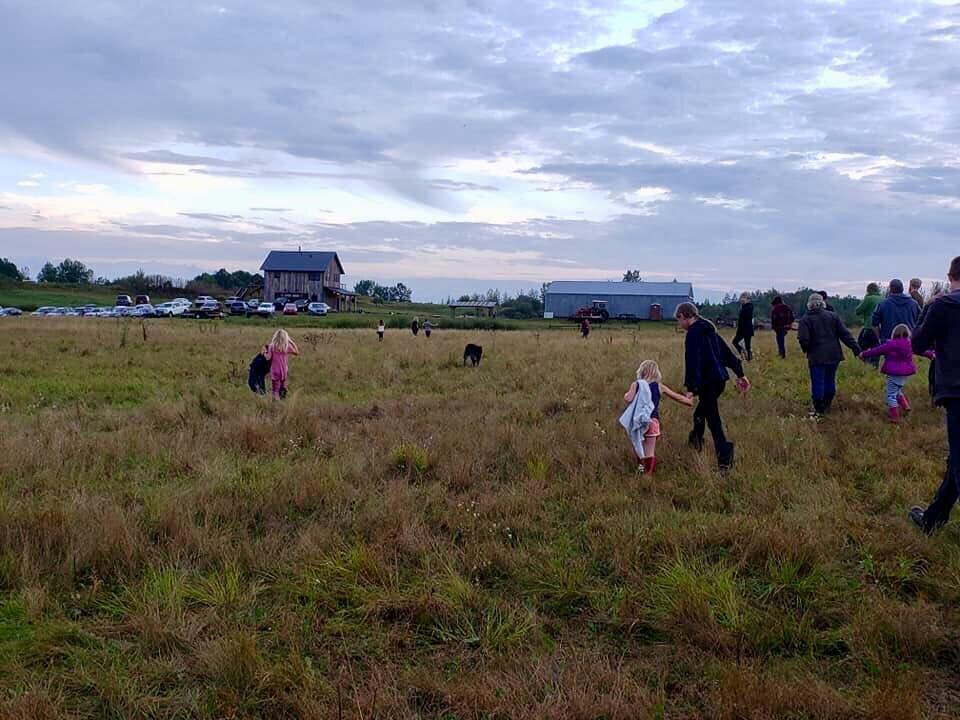 community - pasture walk tour.jpg
