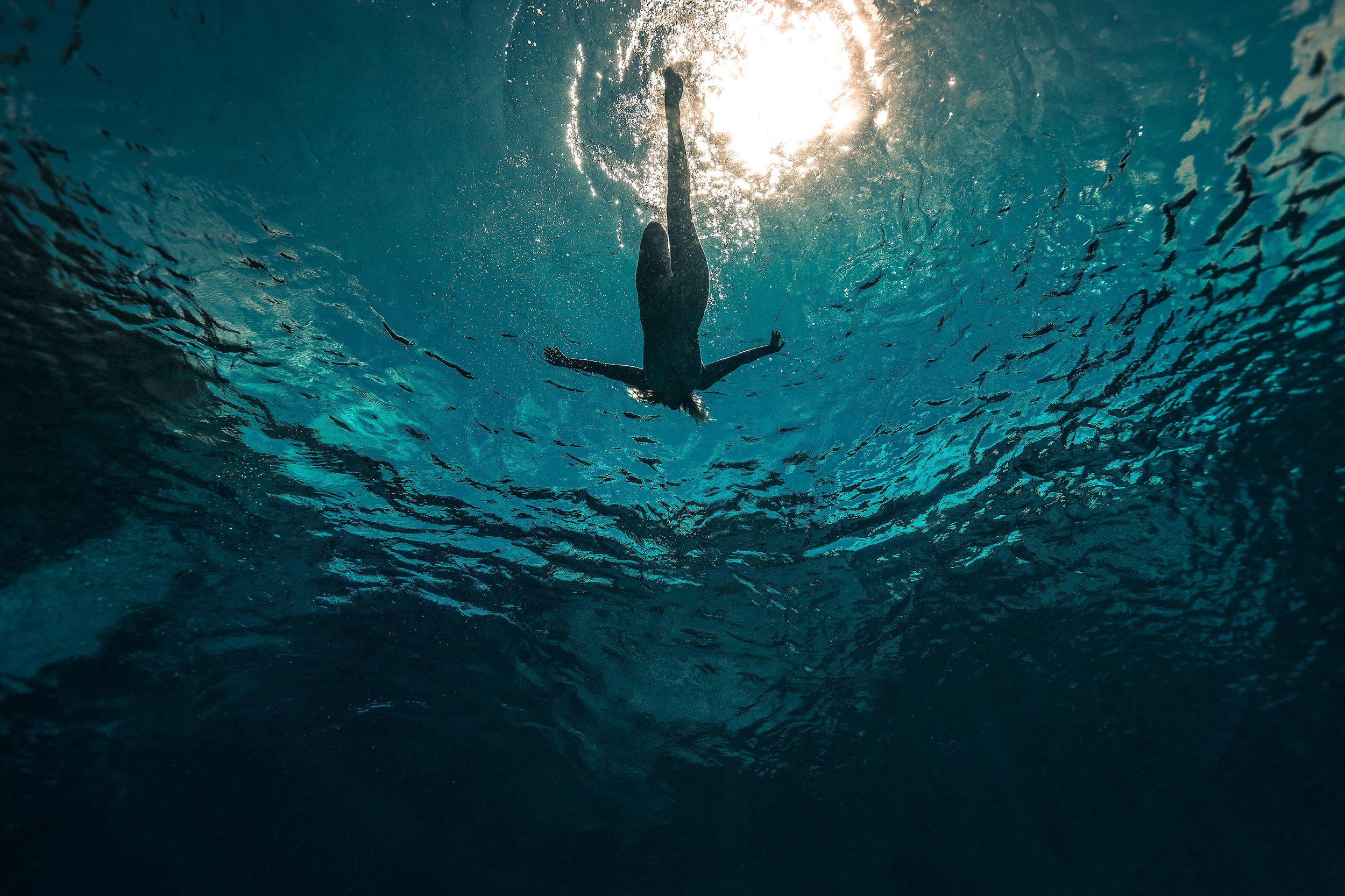 underwater-scheffer-photographer