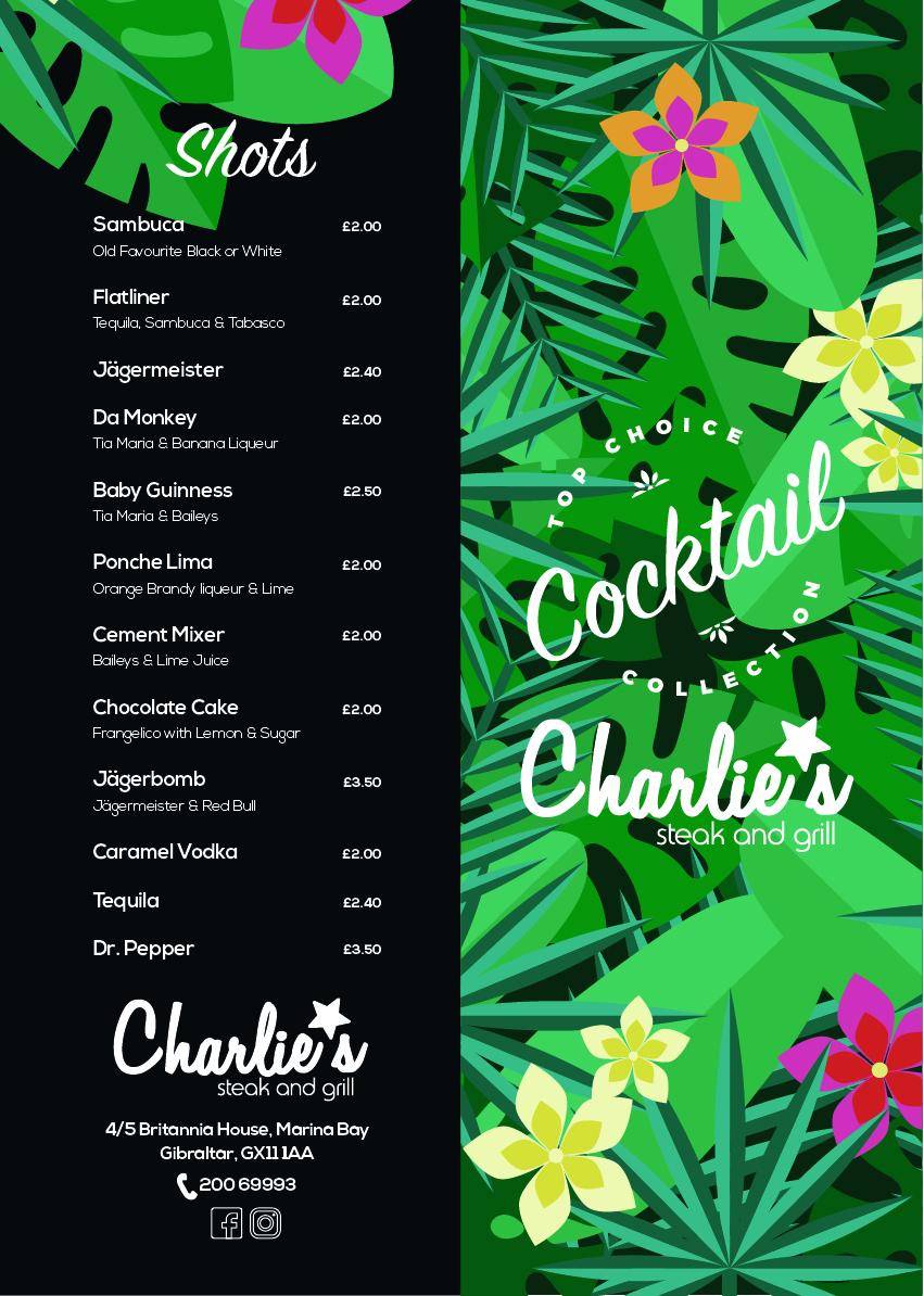 Cocktail nuevo A4_Mesa de trabajo 1.jpg