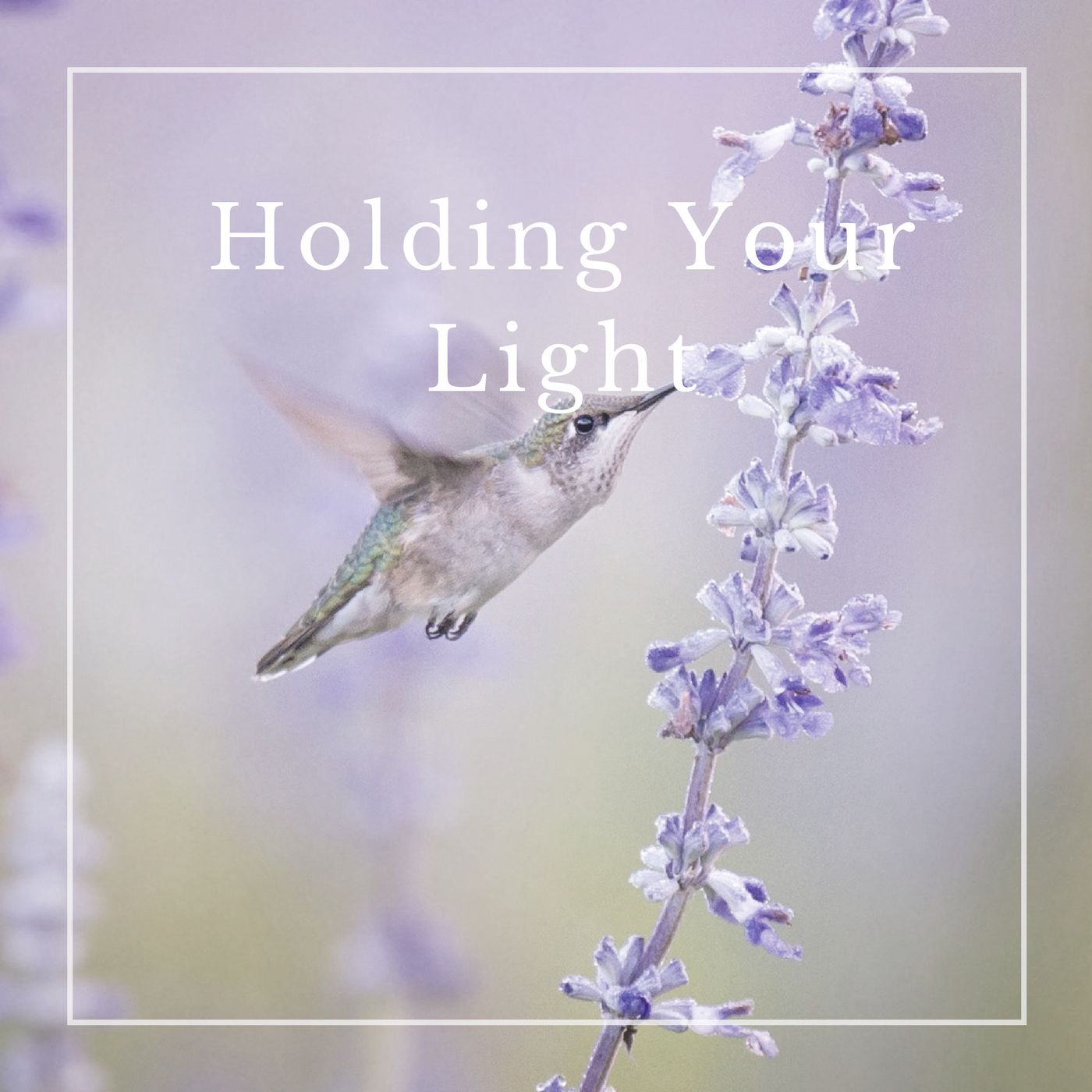 HOLDING YOUR LIGHT