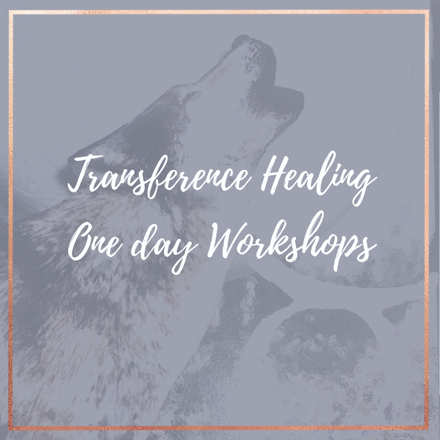 TH one day workshops copy 3.jpg