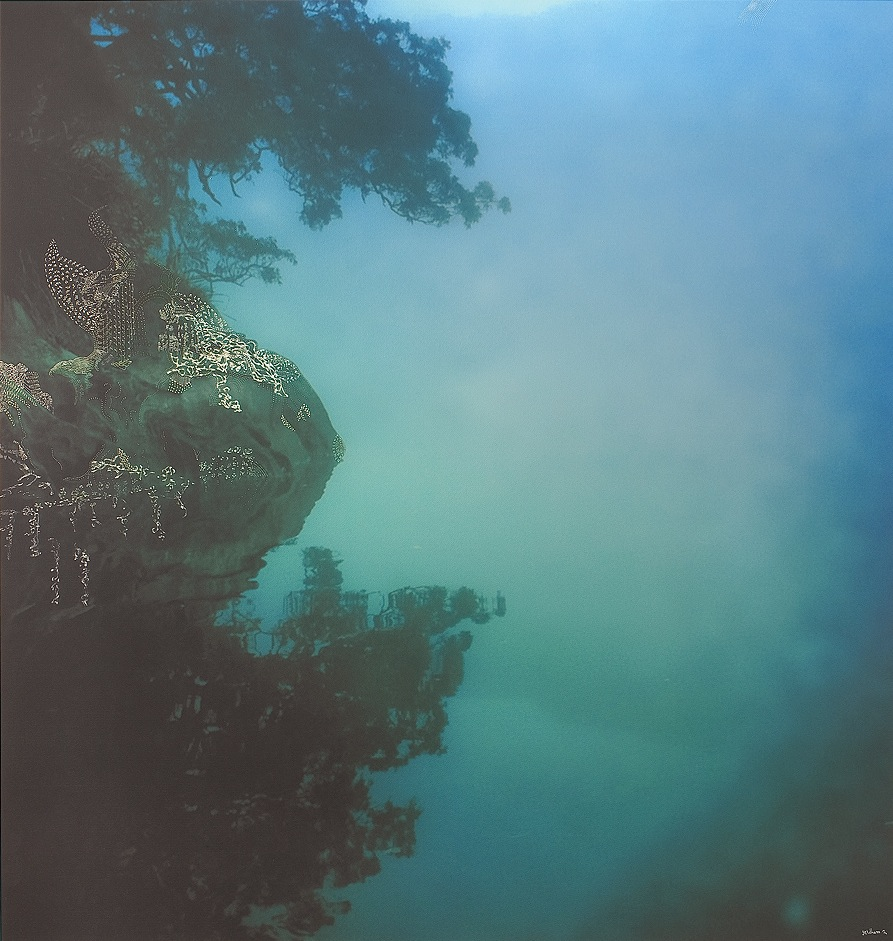 Forgiveness (Smith's Creek No.2) by Josh Yeldham