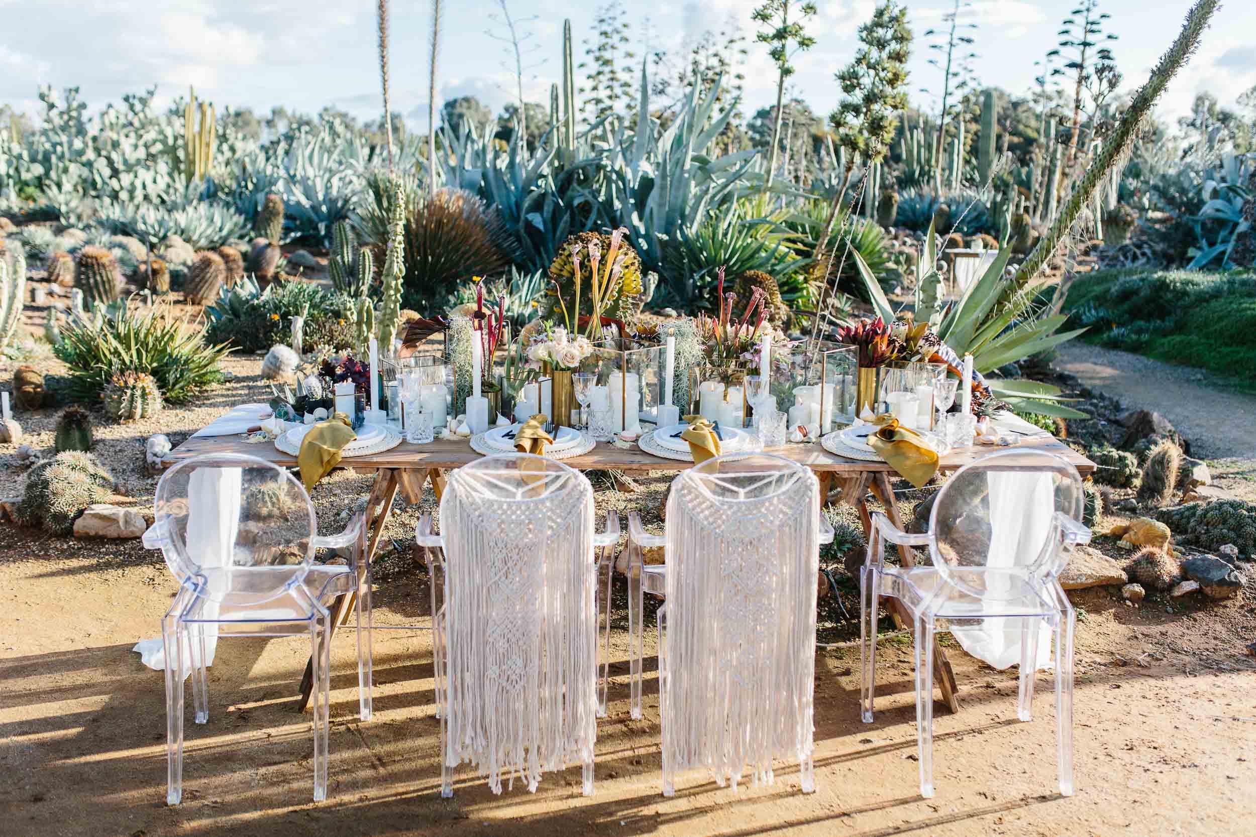 Kas-Richards-Ruby-and-James-Stylist-Cactus-Country-Karen-Willis-Holmes-Bridal-One-Heart-Studios-Boho-Wedding-1.jpg