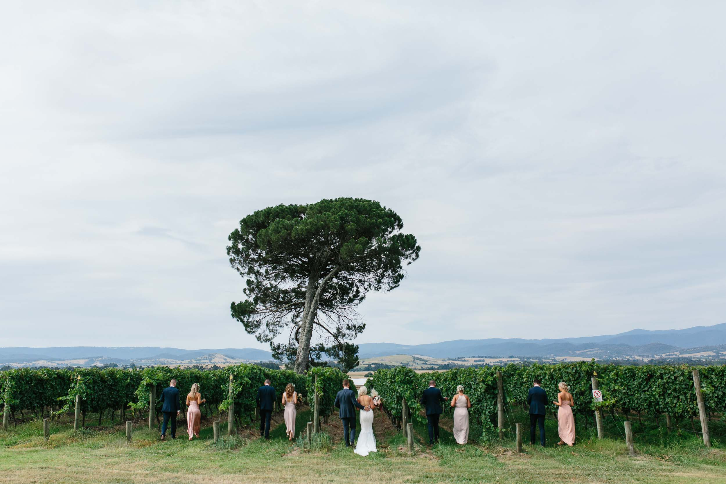 Kas-Richards-Stones-of-the-Yarra-Valley-Wedding-Pallas-Couture-Gown-441.jpg