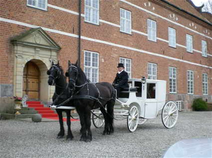Horse carriage for the bride & Groom, denmark