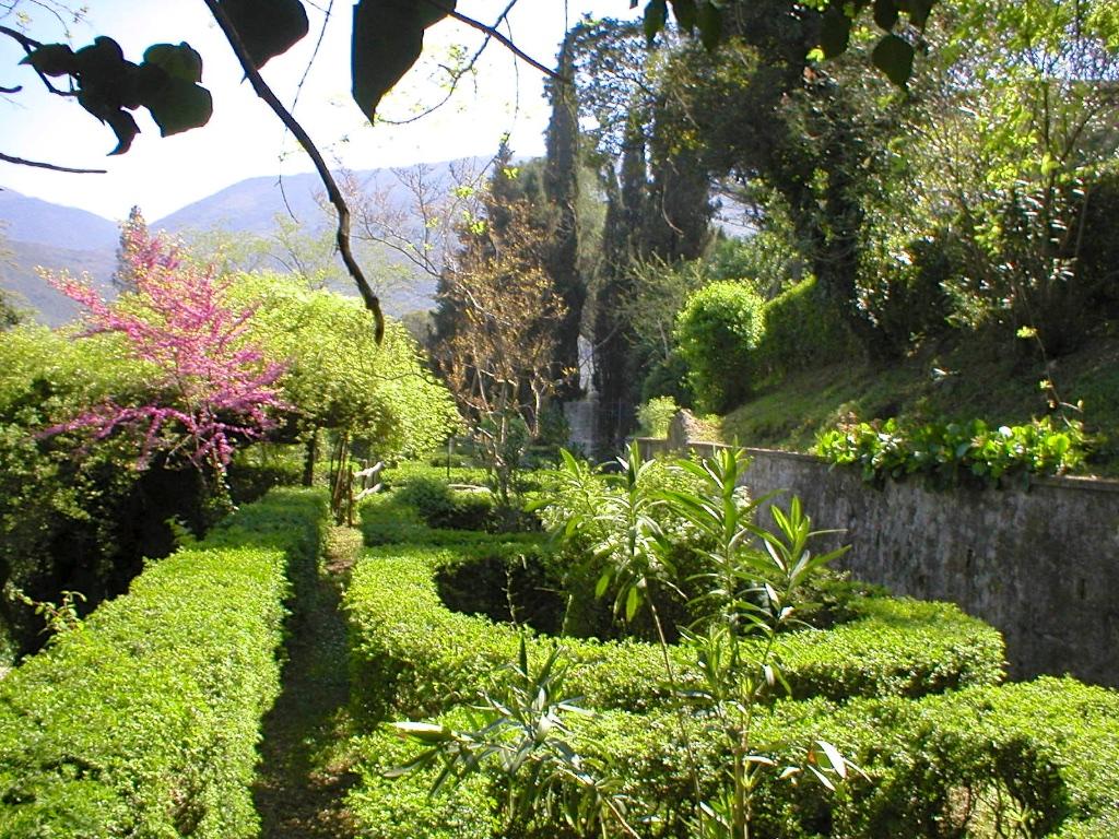 forani gardens.jpg