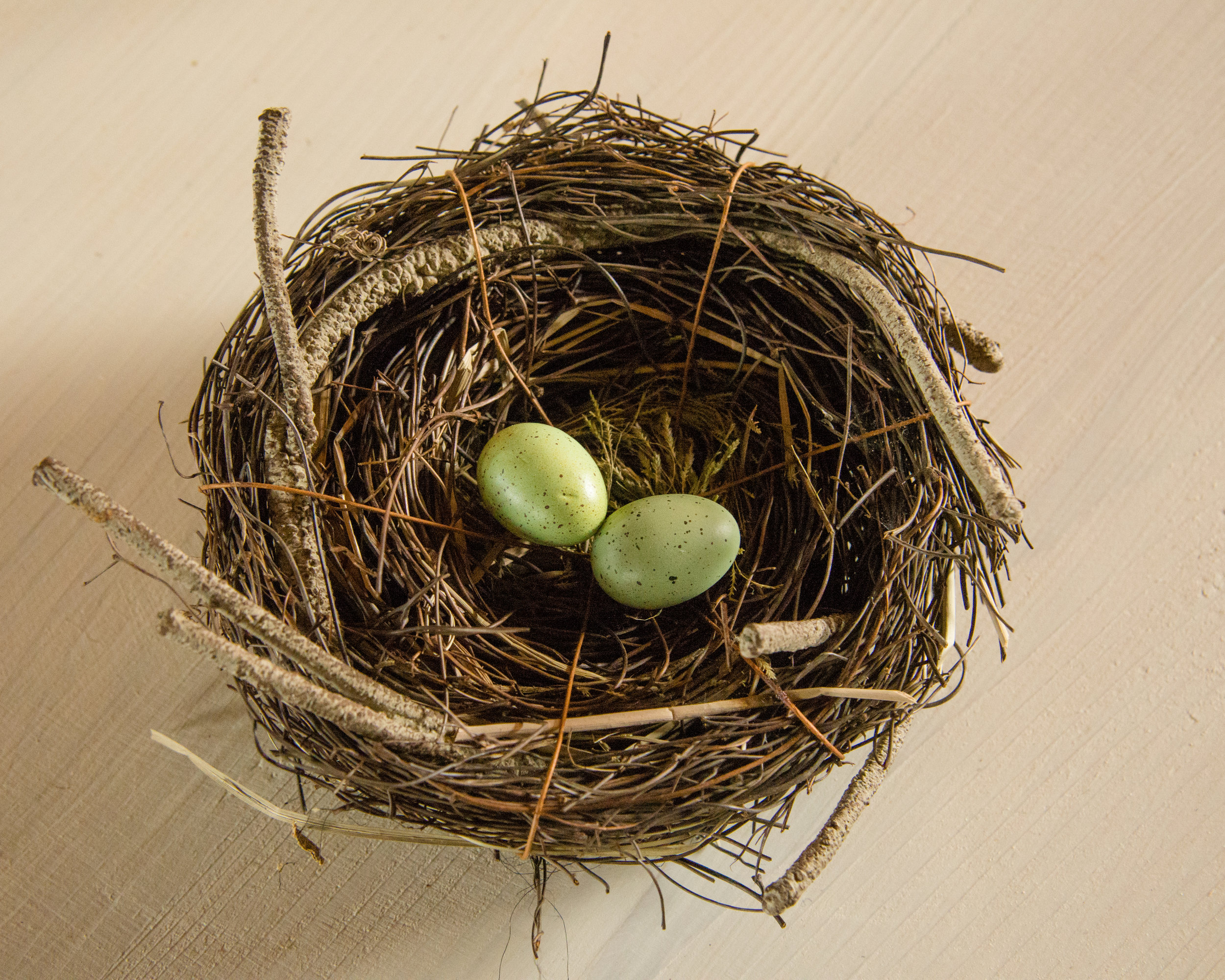 Robin nest and eggs included in our table decor