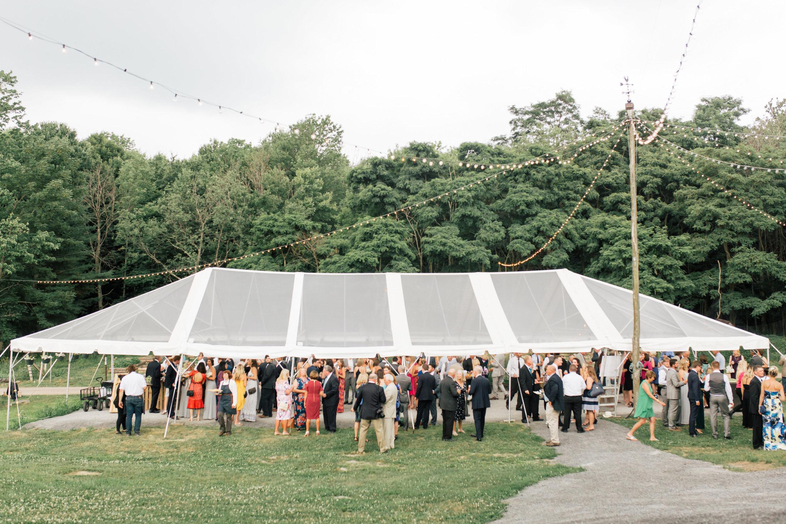 Ben Elise Wedding-Cocktail Hour-0022.jpg