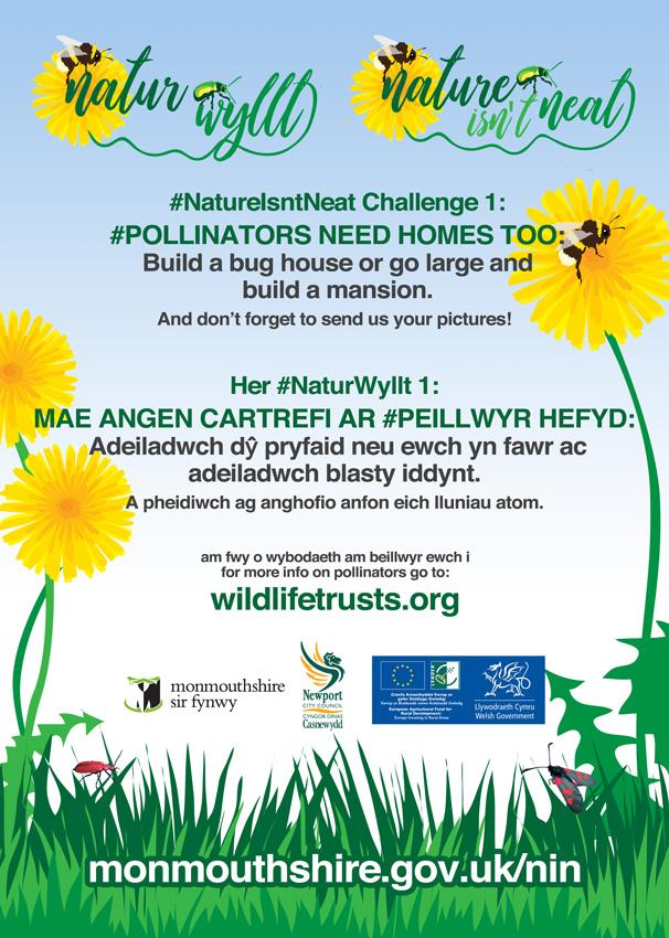 Nature-Challenge-1-web.jpg