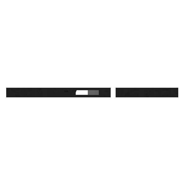 Tommy_Hilfiger_Planq.png