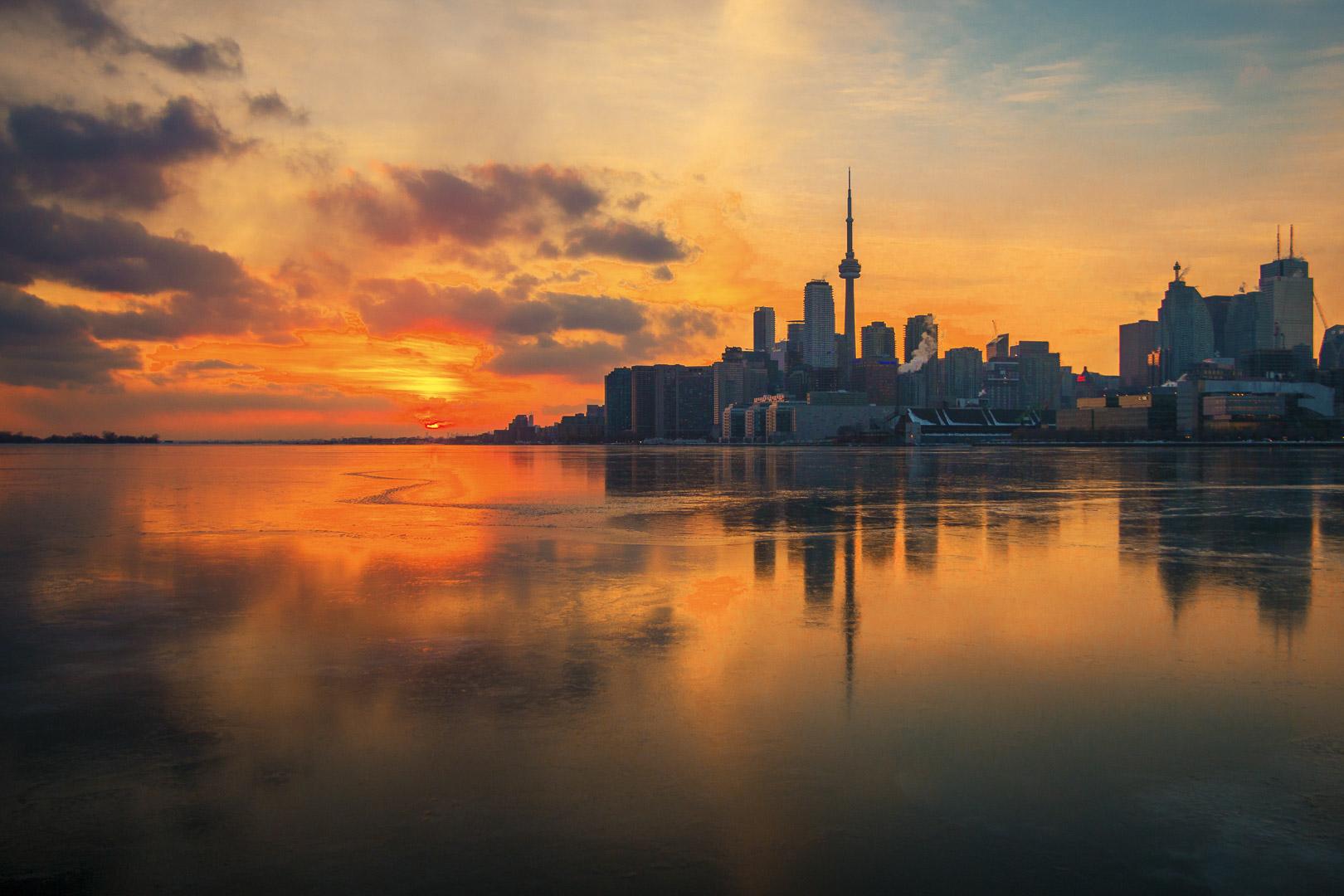 Toronto Skyline from Jennifer Kateryna Koval's'kyj Park