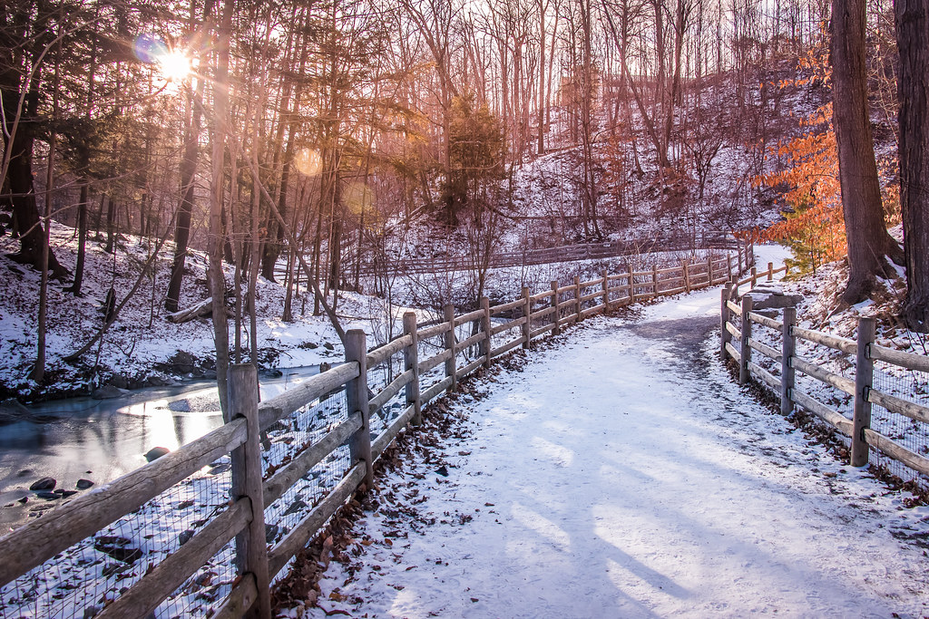 Snowy Path at Sunset
