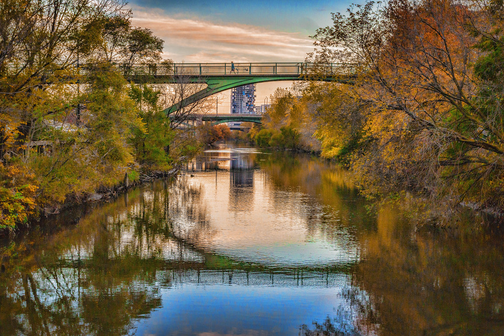 Don River in the Fall