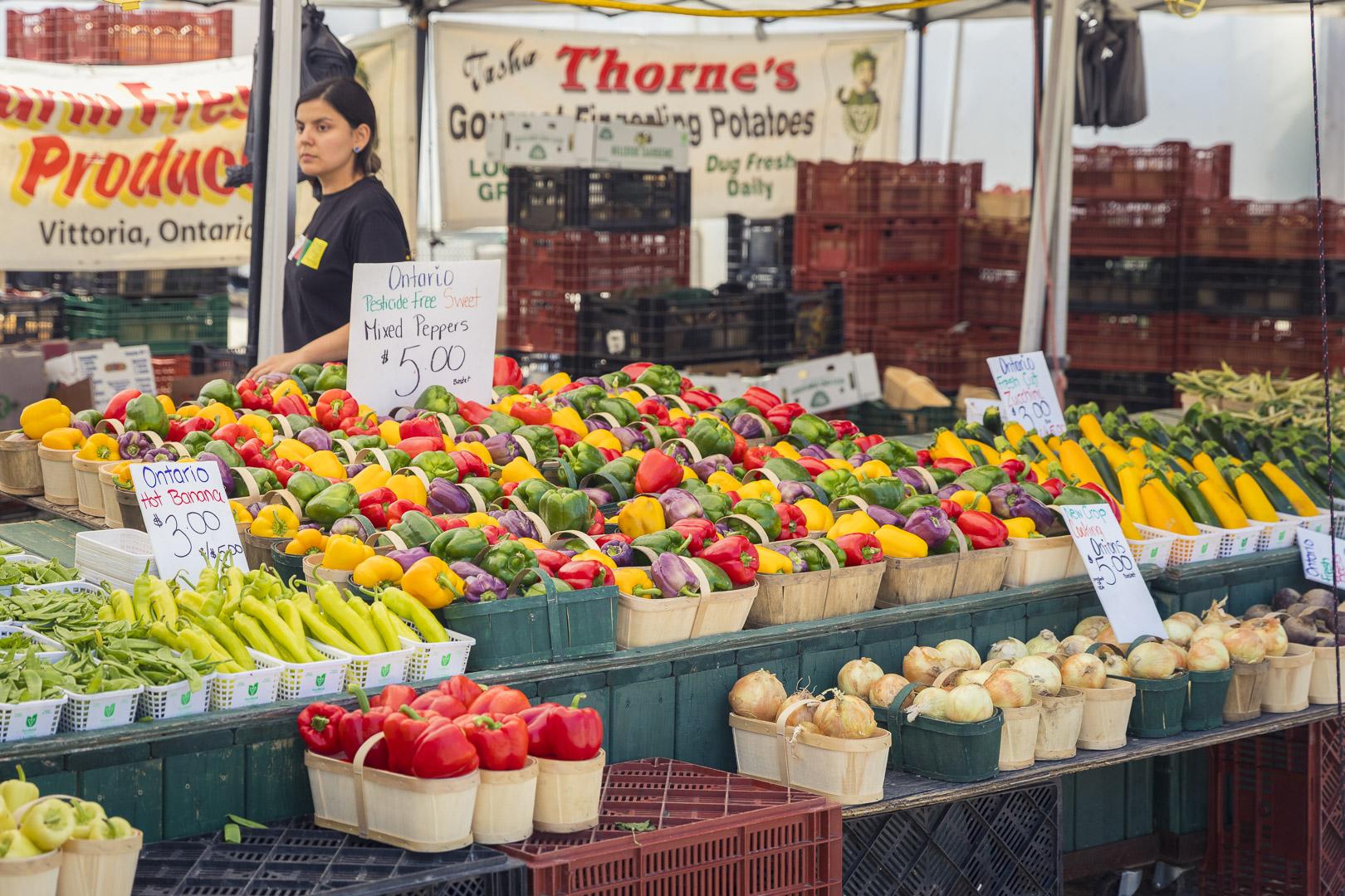 Farm Fresh Produce from Vittoria, Ontario