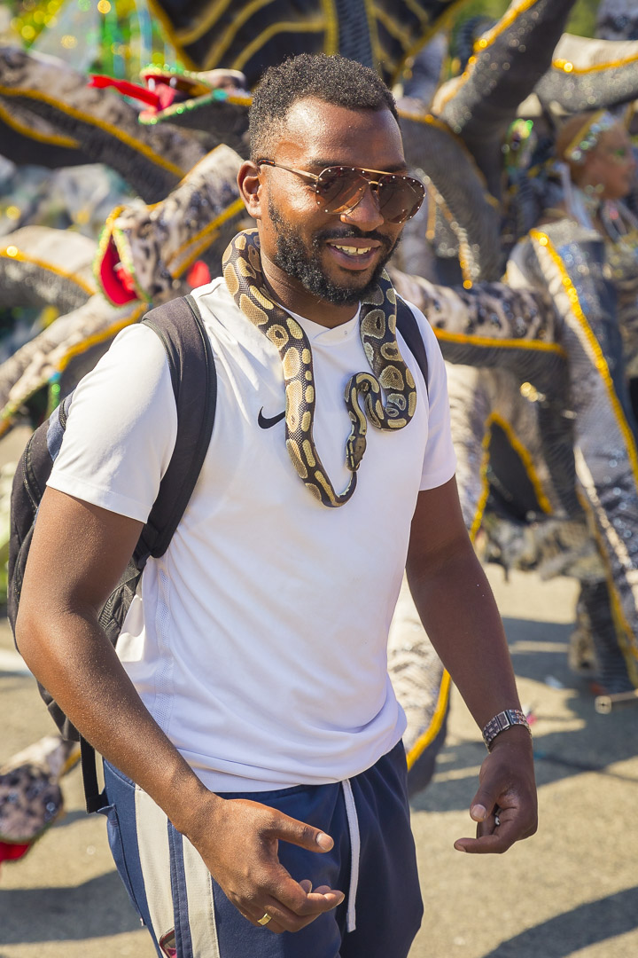 Caribana 2019 Caribbean Carnival Toronto 30.jpg