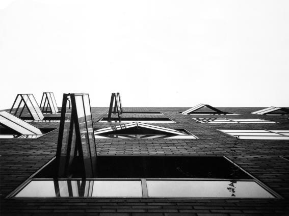 finestrelow.jpg
