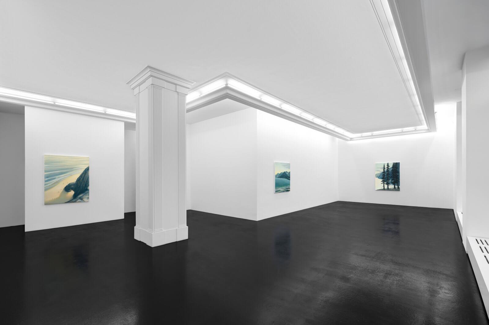 DA-Natural-Selections-Installation-View-8-HIRES-1600x1062.jpg