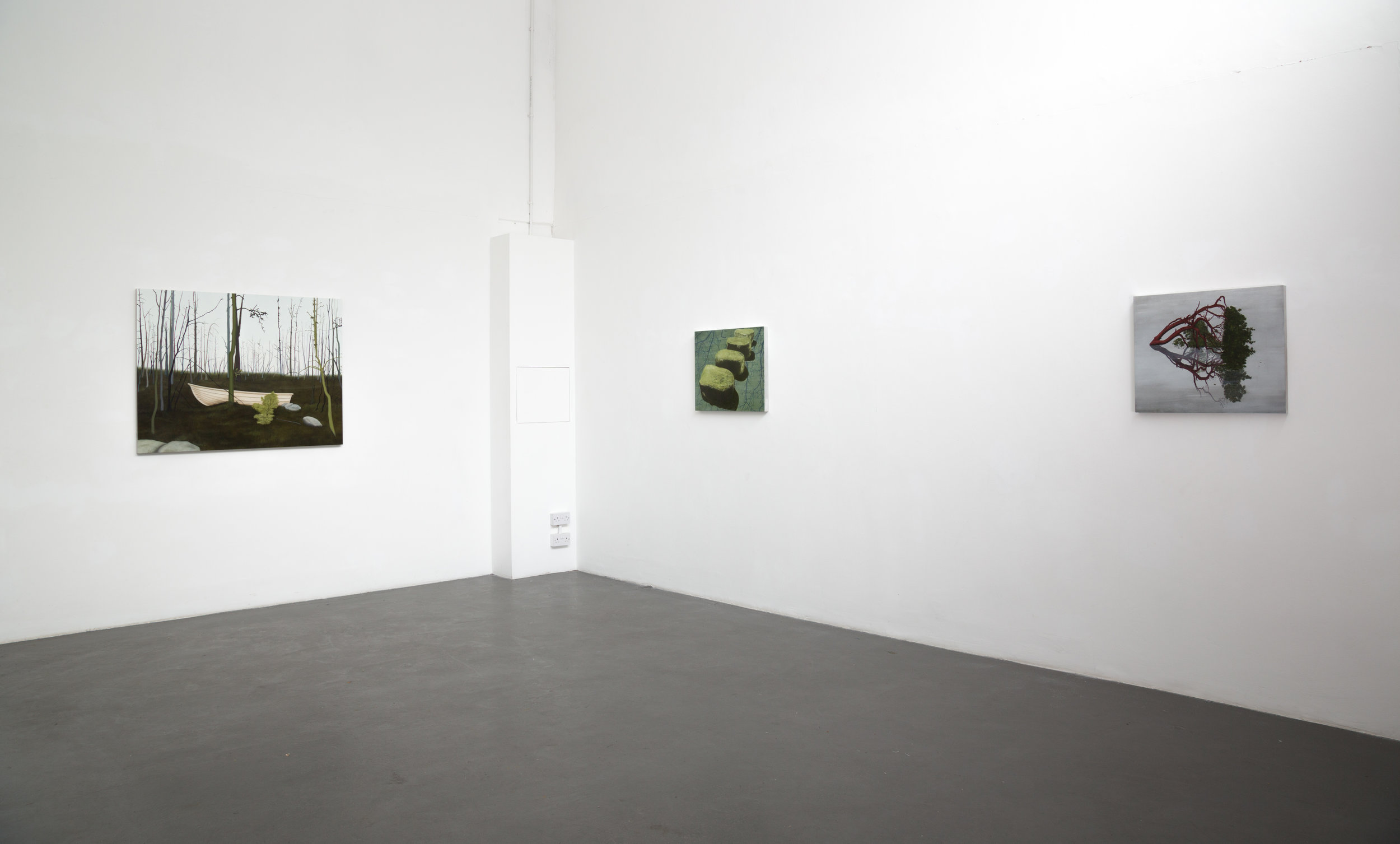 Installation View of Covadonga Valdes,Turps Gallery