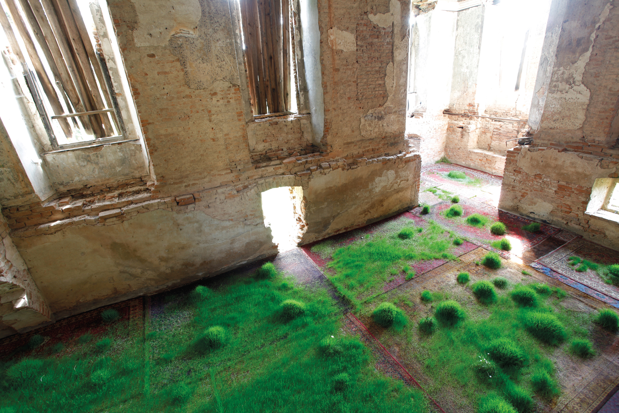 """""""From May to June 2012 I grew grass on rugs in a castle."""""""