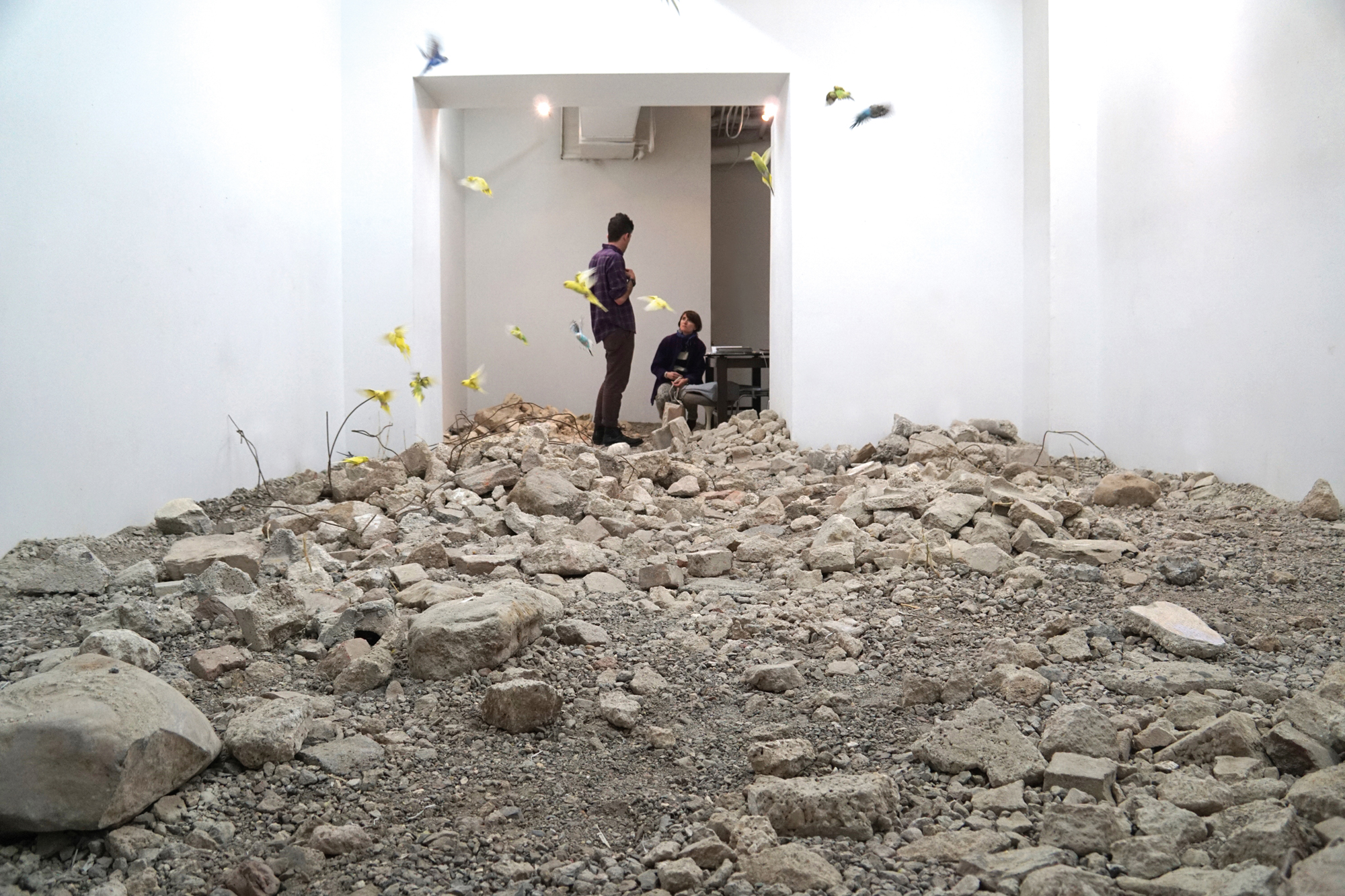 """""""In july 2015 I shipped debris from the syrian border to use as bird litter."""""""