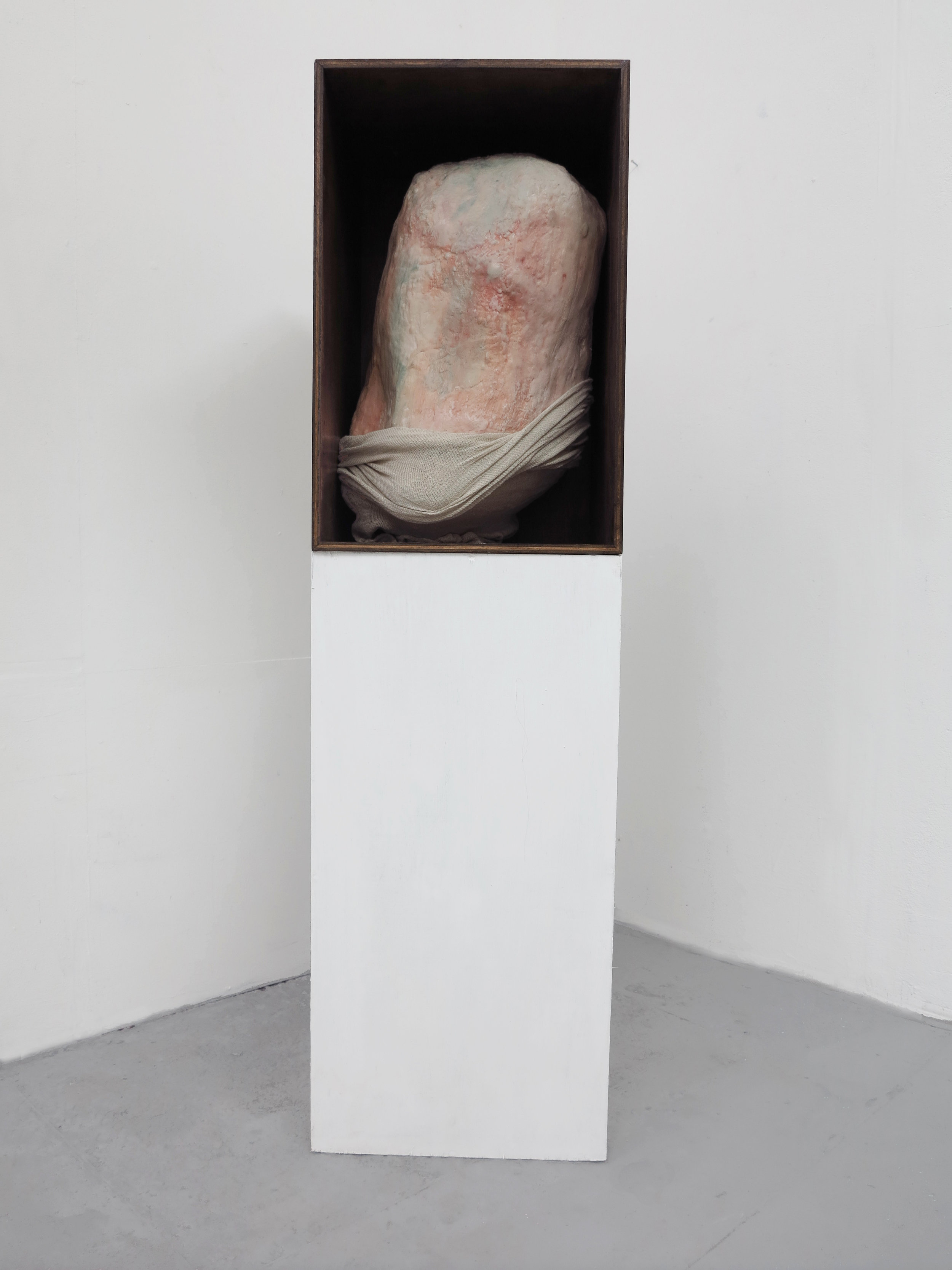 Sarcophagus, 2017