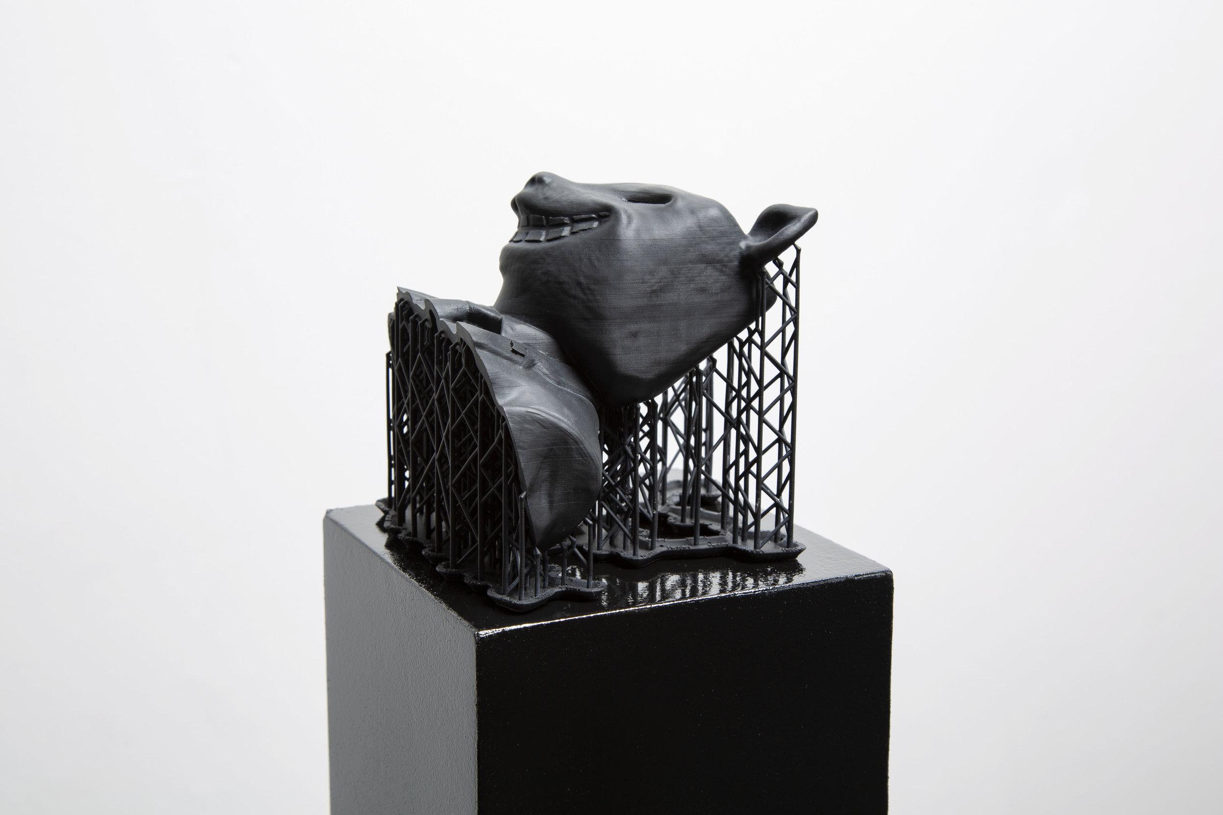 Structures of Cat-italism, 2019