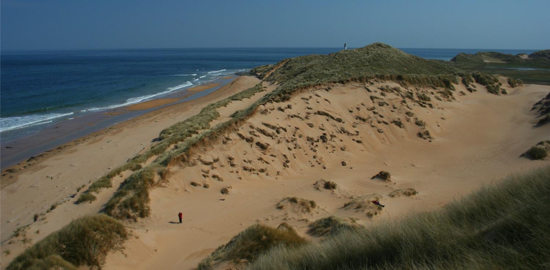East coast dunes
