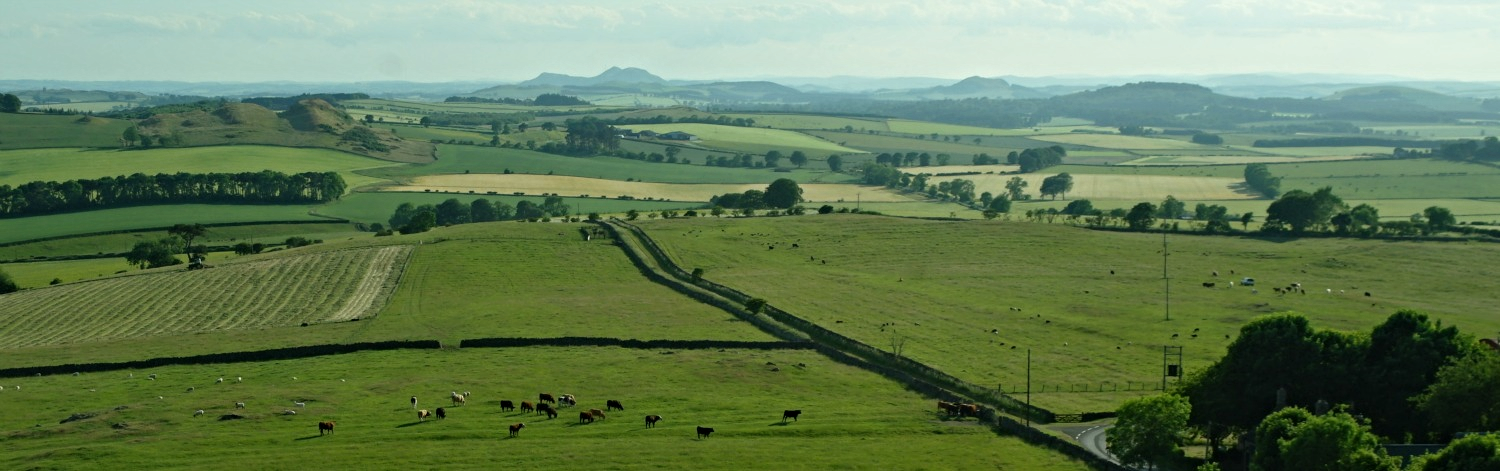 View from Hume castle, scottish borders