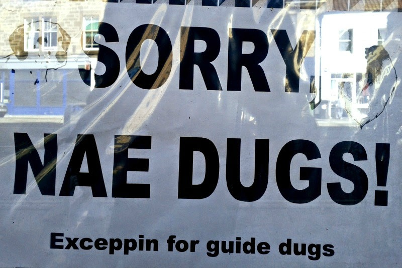 Your dog is not welcome in this pub
