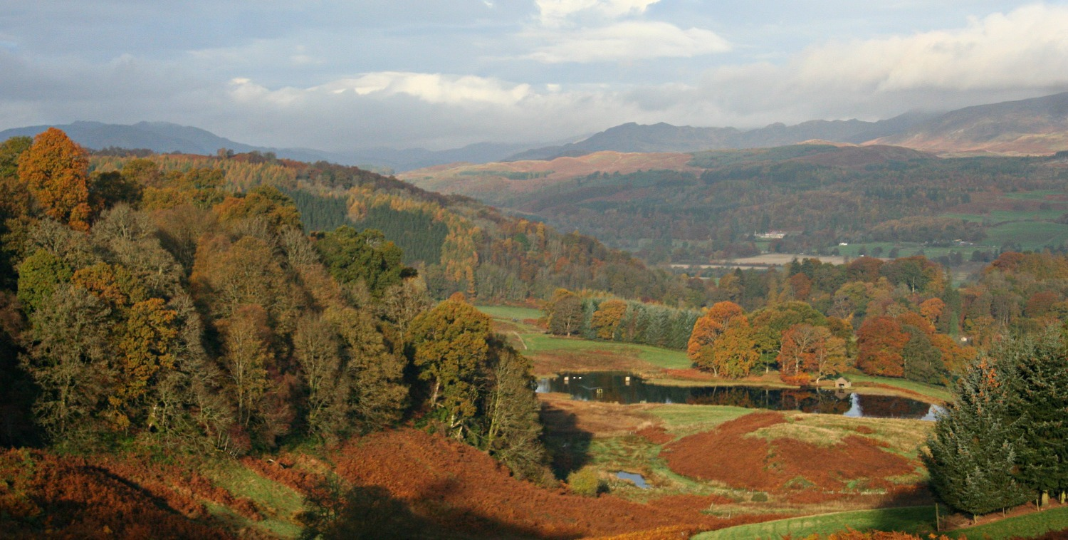 Strathearn in autumn, west of Crieff, Perthshire. The bracken is especially attractive when it goes over.