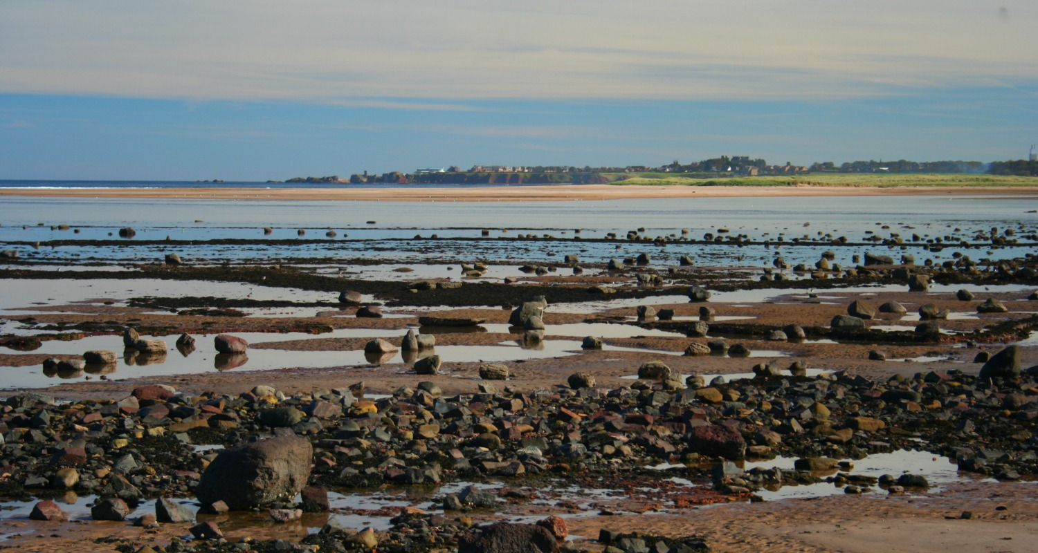 The tide is falling and the estuary of the River Tyne lies between me and the town of Dunbar on the horizon. The John Muir Country Park is a great resource for East Lothian folk.