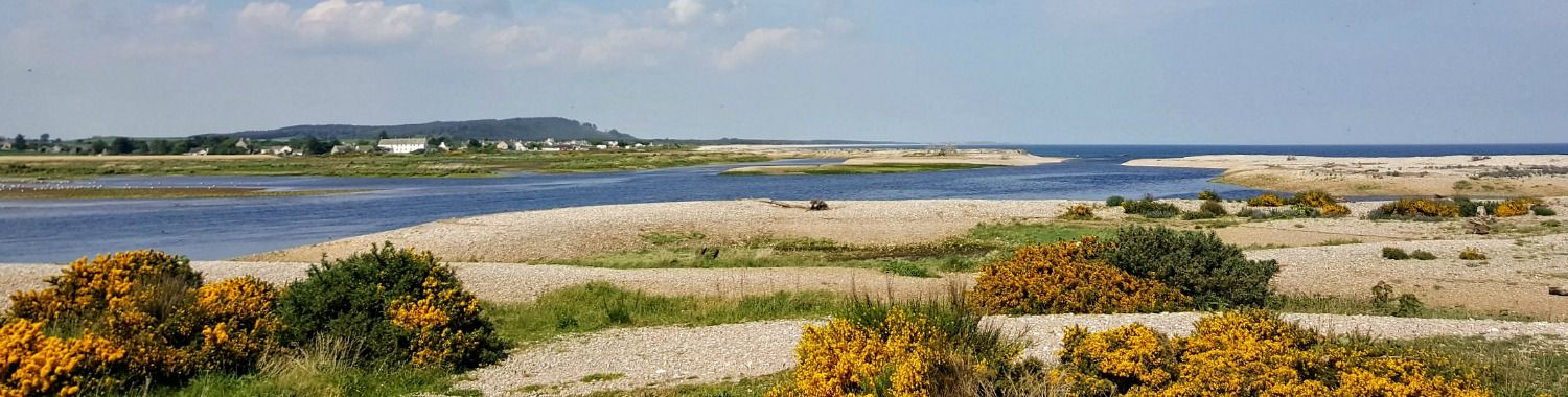 The River Spey reaches the sea in a tangle of shingle banks, channels and marsh. Great for birdlife. Ospreys more or less unmissable in summer. Kingston-on-Spey on left.