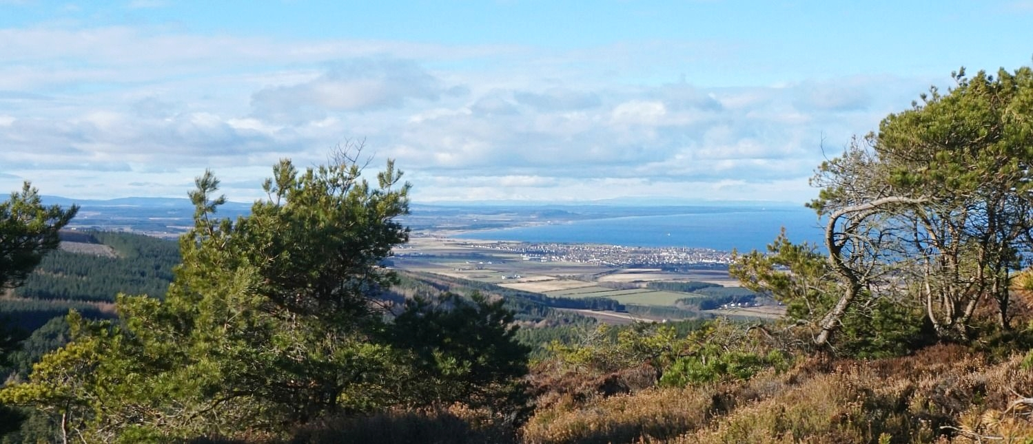 To be honest, this isn't a summer picture at all. It's a blue February day from the path up the Bin Hill of Cullen, looking west over the town of Buckie, along the narrowing Moray Firth. As usual, the narrow coastal strip catches the sun. There's a lot of snowy hills 'way far off in the west...