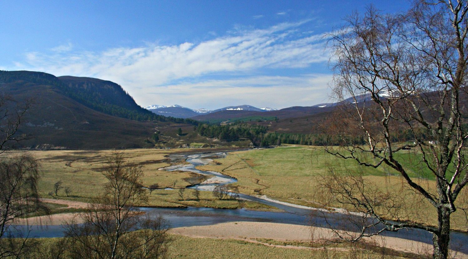 In upper Deeside, looking north on the road between Braemar and Inverey. The meltwaters of the Quoich run down to join the young River Dee. Still some snow on the Cairngorms above. DATE: 13 April 2007.