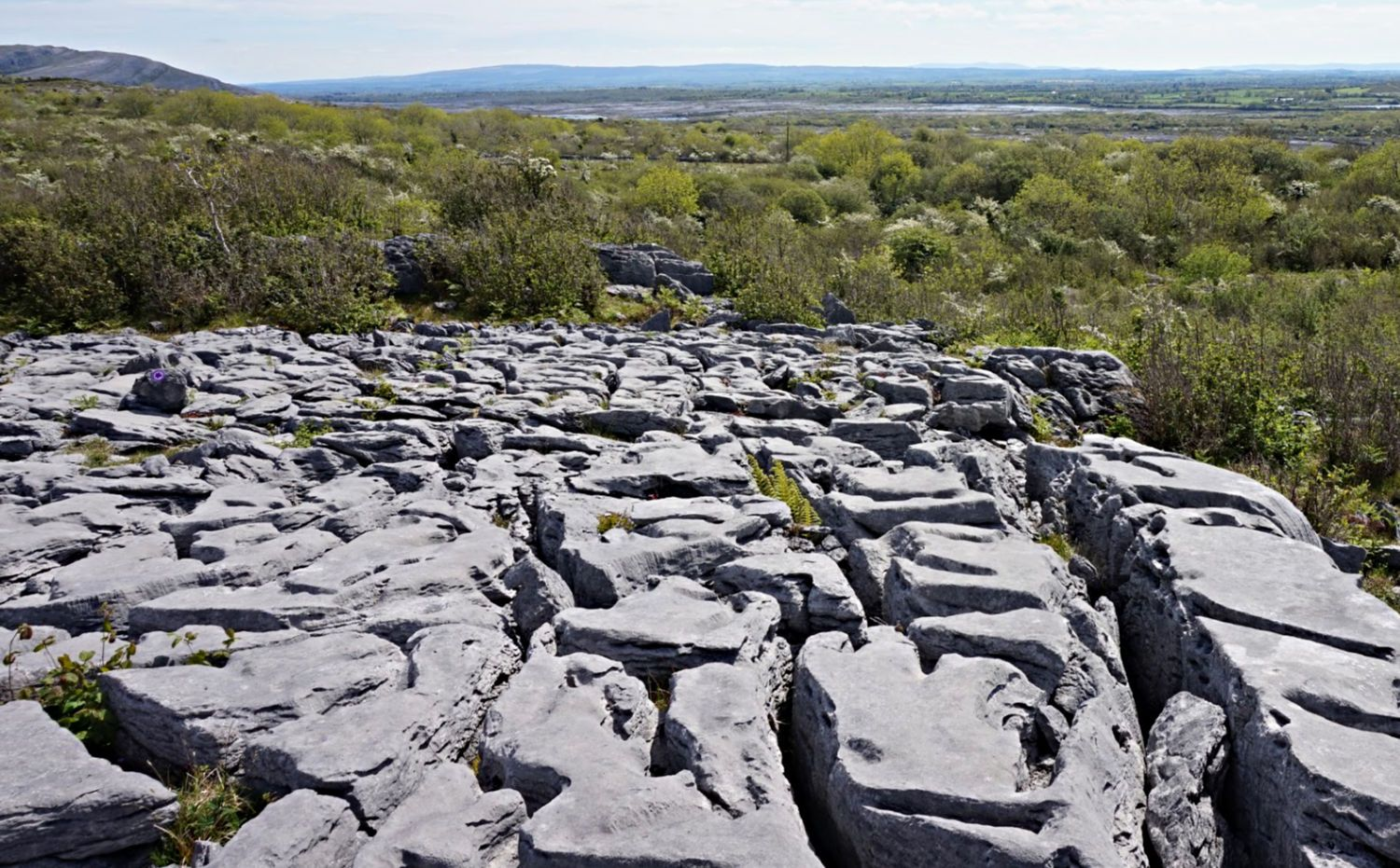 Well, there are quite a few grikes and clints in this slabby scene in The Burren.