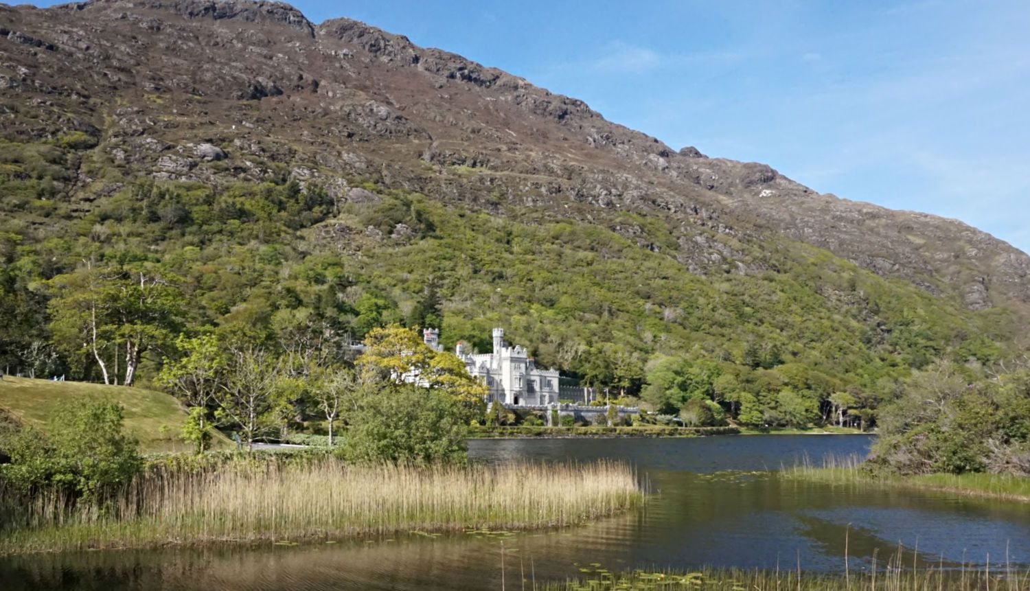 In the big league of west of Ireland attractions, here's Kylemore Abbey, nestling into the hill. (They used dynamite when it was originally constructed, to help it nestle.) Lots to see and do here - and the cafe is nice!