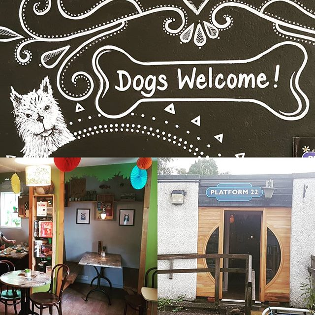 Delighted to discover #dogfriendly #platform22 in #torphins - delicious food, friendly staff - perfect!